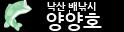 동해 낙산항 배낚시 양양호